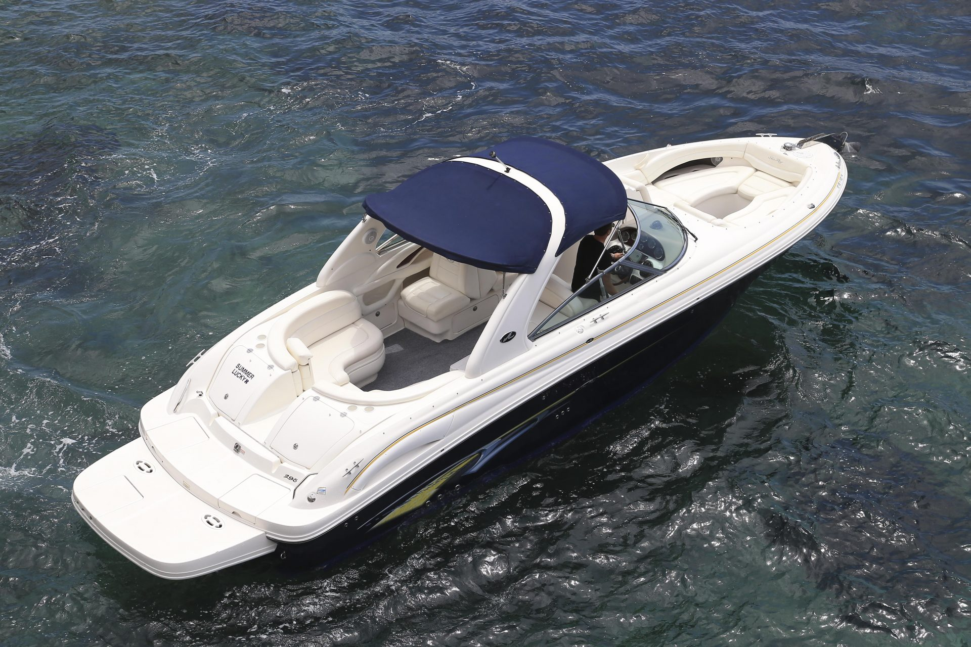 SeaRay295 SummerLucky 3
