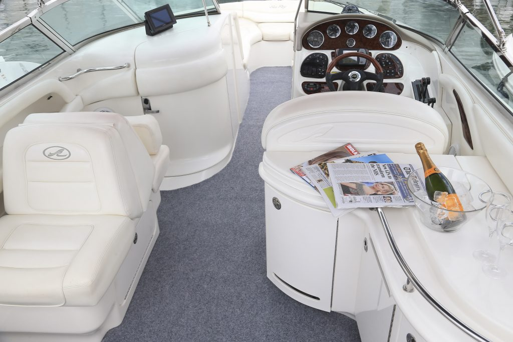 SeaRay295 SummerLucky 6