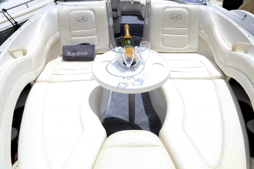 SeaRay295 SummerLucky 8