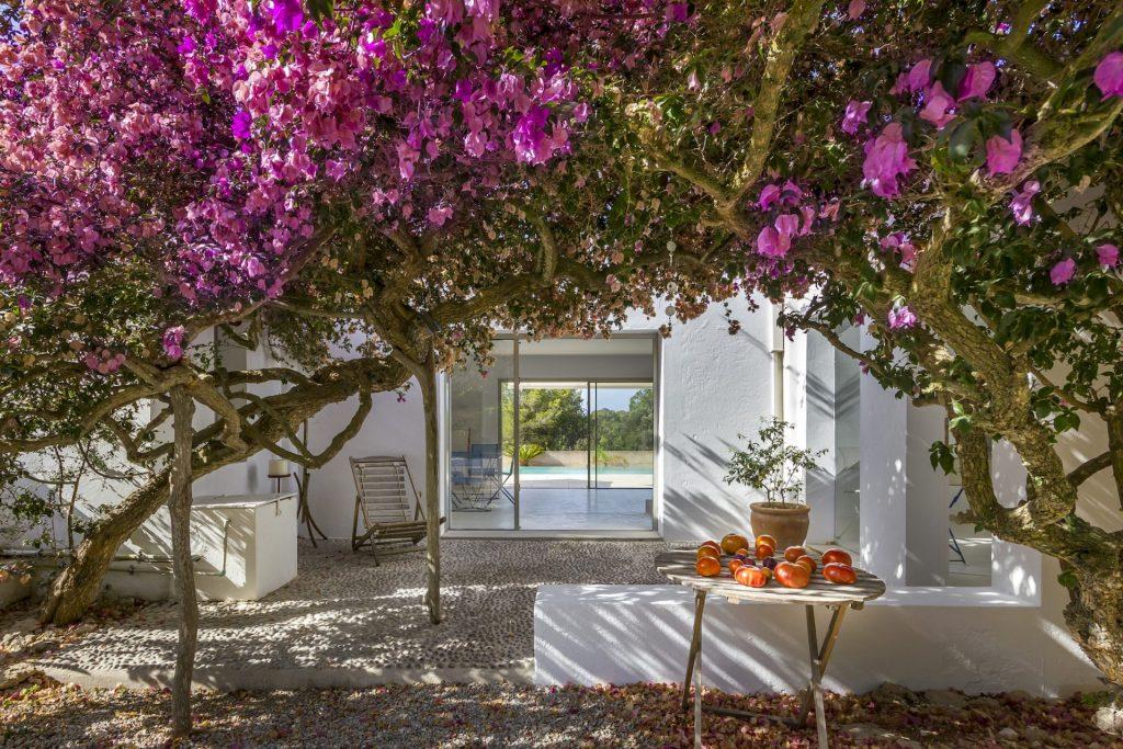 Casa Flor Hq2